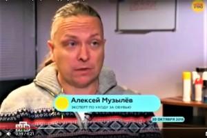 0.013 Алексей Музылёв в программе Доброе Утро на НТВ